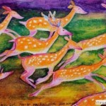 Kenfortes_Deers