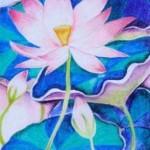 Kenfortes_Lotus bloom