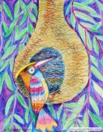 Kenfortes_Weaver bird CRAYONS
