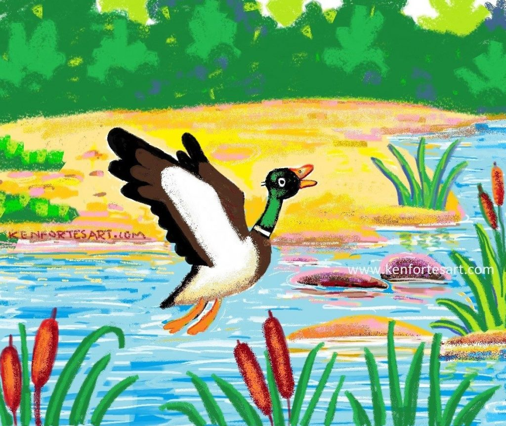 Flying mallard duck- crayon and digital MS PAINT spray - kenfortes children online art classes India - Kids free art lessons pencils and paint art courses