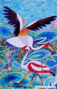 Kenfortes_Cranes Crayons