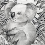 SAVE KOALA - from Austalian wild forest fire- pencil shading - kenfortes