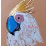 Cockatoo by Mita in oil pastel on pastel paper - kenfortes online art class student-